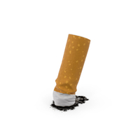 Snuffed Cigarette Object