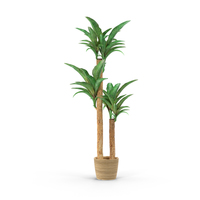 Houseplant Object