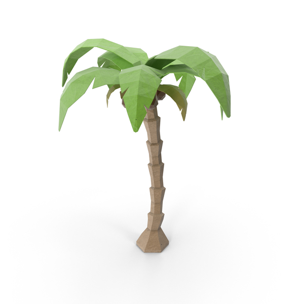 Low Poly Coconut Tree Object